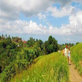 Walk the Campuhan Ridge